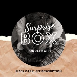 Other - Mystery/Surprise Toddler Girl Box